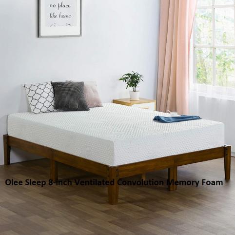 Olee Sleep 8-inch Ventilated Convolution Memory Foam